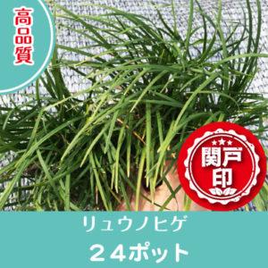 ryunohige-24p