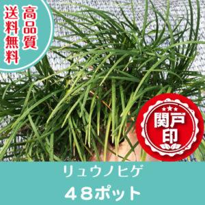 ryunohige-48p