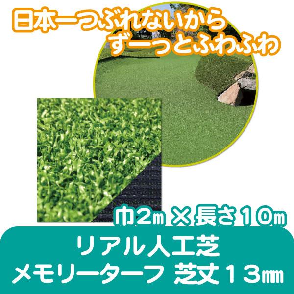 mtafu13-2m10m