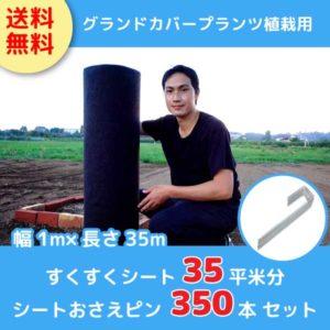 sk-sheet35m2-jpin350