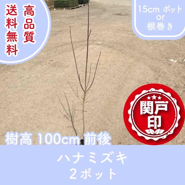 hanamizuki100-2p