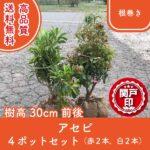 asebi30akashiro-4p
