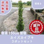 kaizukaibuki150-3p